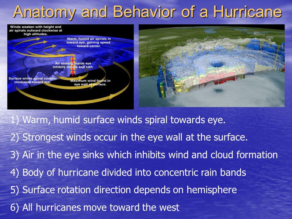 Anatomy and Behavior of a Hurricane