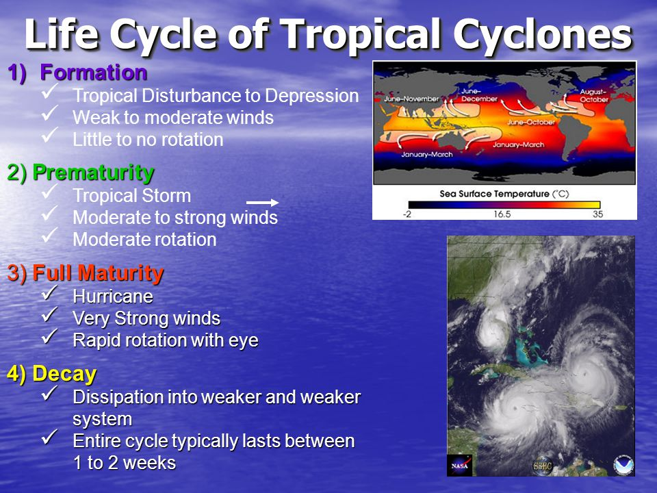 Life Cycle of Tropical Cyclones