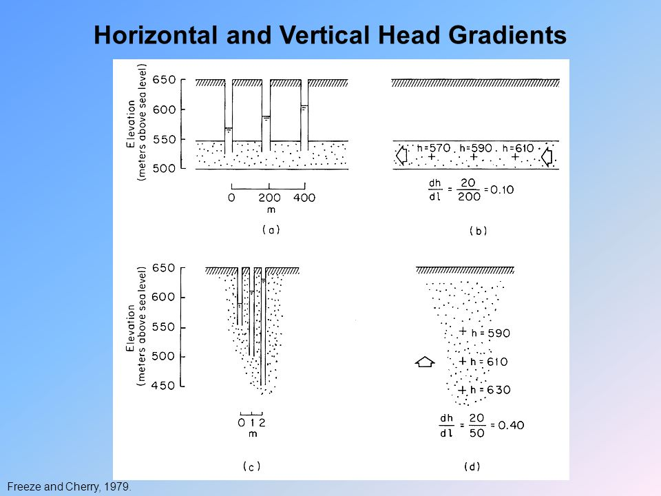 Horizontal and Vertical Head Gradients