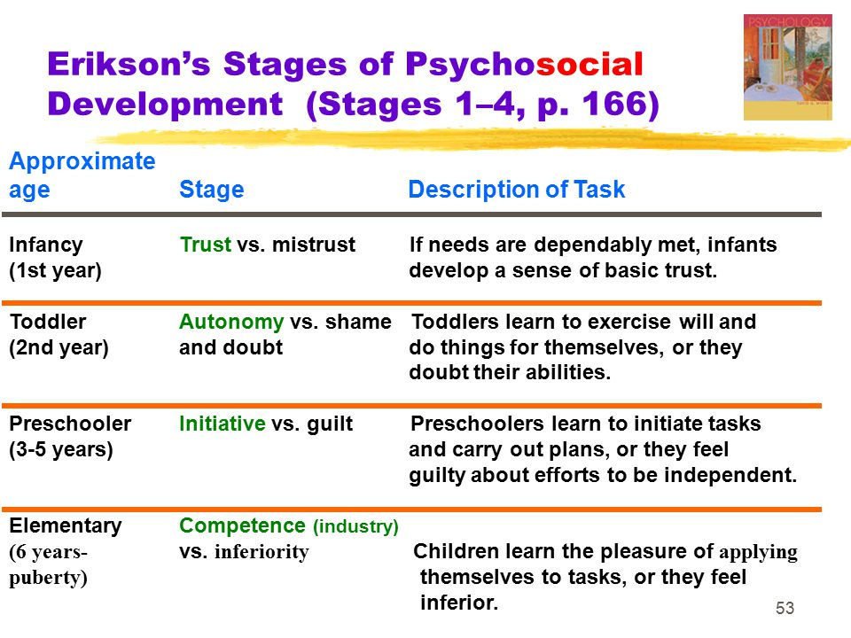 Erikson's Stages of Psychosocial Development (Stages 1–4, p. 166)