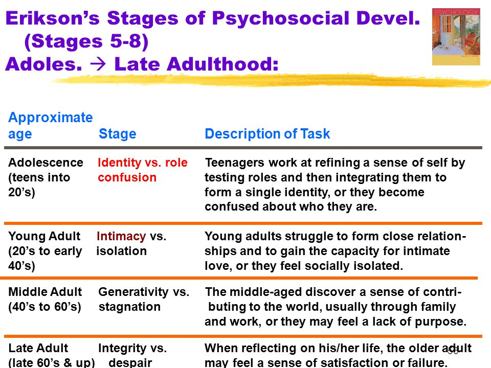 Erikson's Stages of Psychosocial Devel. (Stages 5-8) Adoles