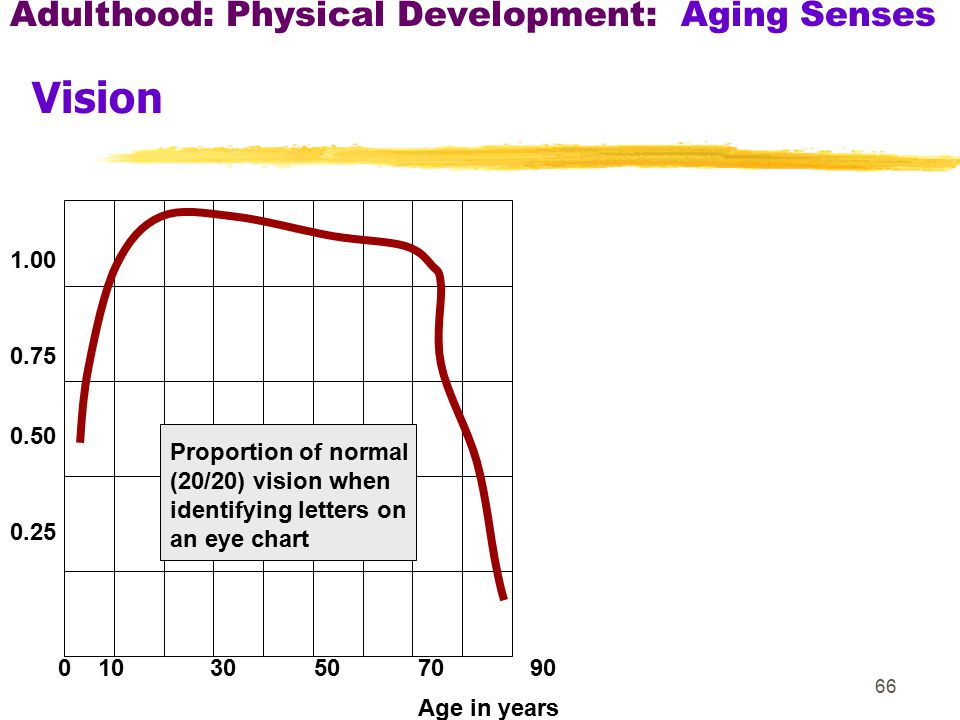 Adulthood: Physical Development: Aging Senses