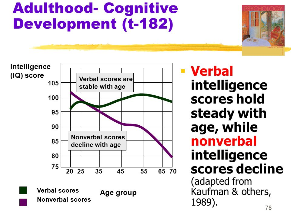 Adulthood- Cognitive Development (t-182)