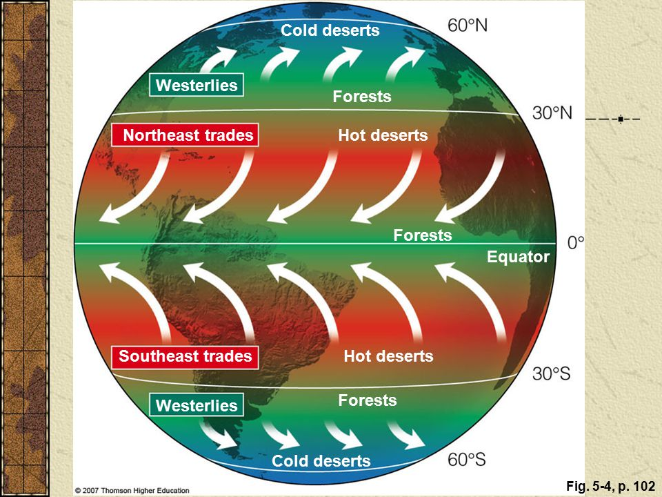 Cold deserts Westerlies Forests Northeast trades Hot deserts Forests