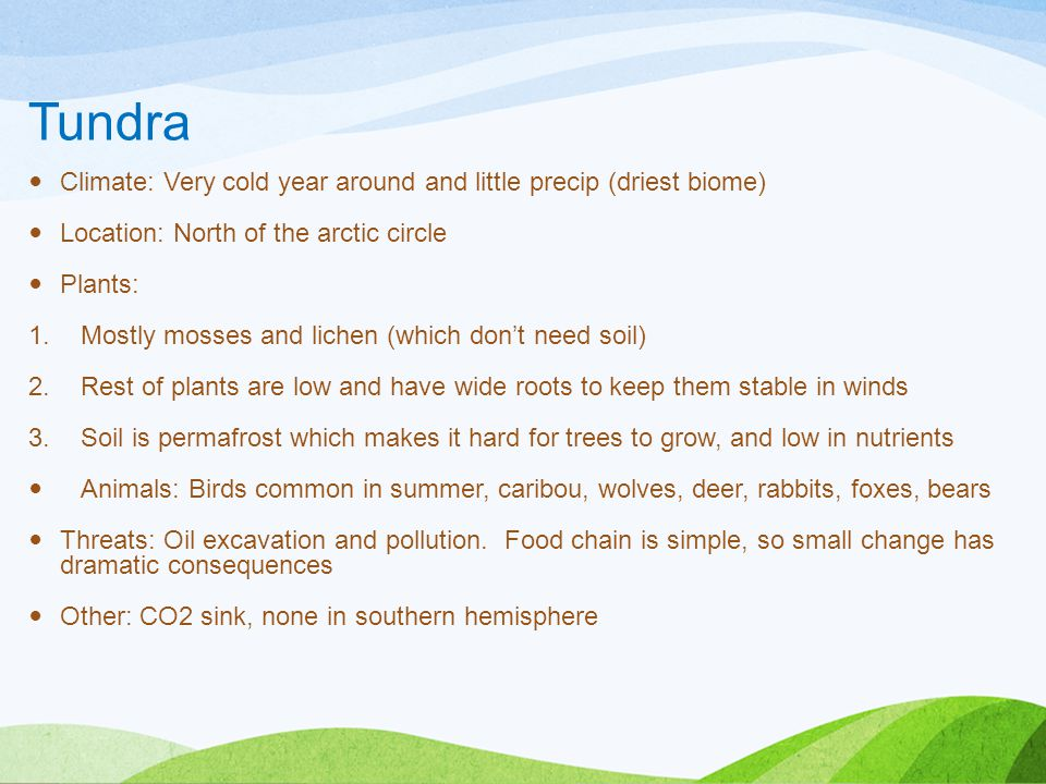 Tundra Climate: Very cold year around and little precip (driest biome)