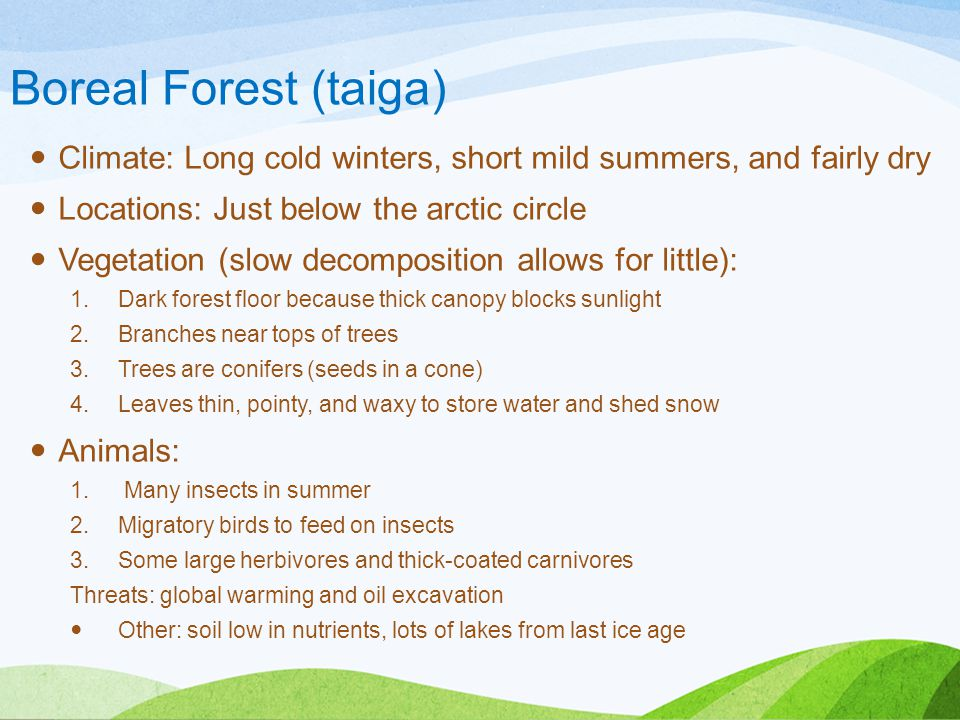 Boreal Forest (taiga) Climate: Long cold winters, short mild summers, and fairly dry. Locations: Just below the arctic circle.