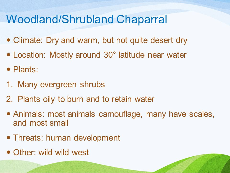 Woodland/Shrubland Chaparral