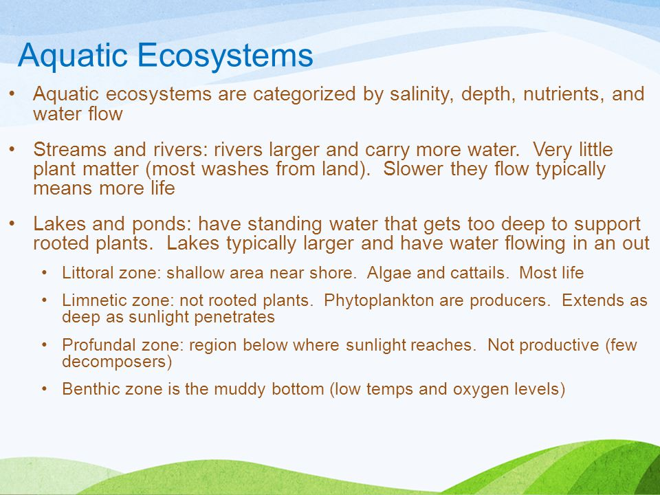 Aquatic Ecosystems Aquatic ecosystems are categorized by salinity, depth, nutrients, and water flow.