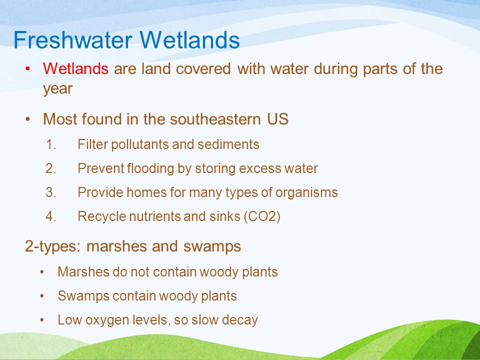 Freshwater Wetlands Wetlands are land covered with water during parts of the year. Most found in the southeastern US.