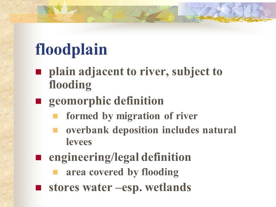 floodplain plain adjacent to river, subject to flooding