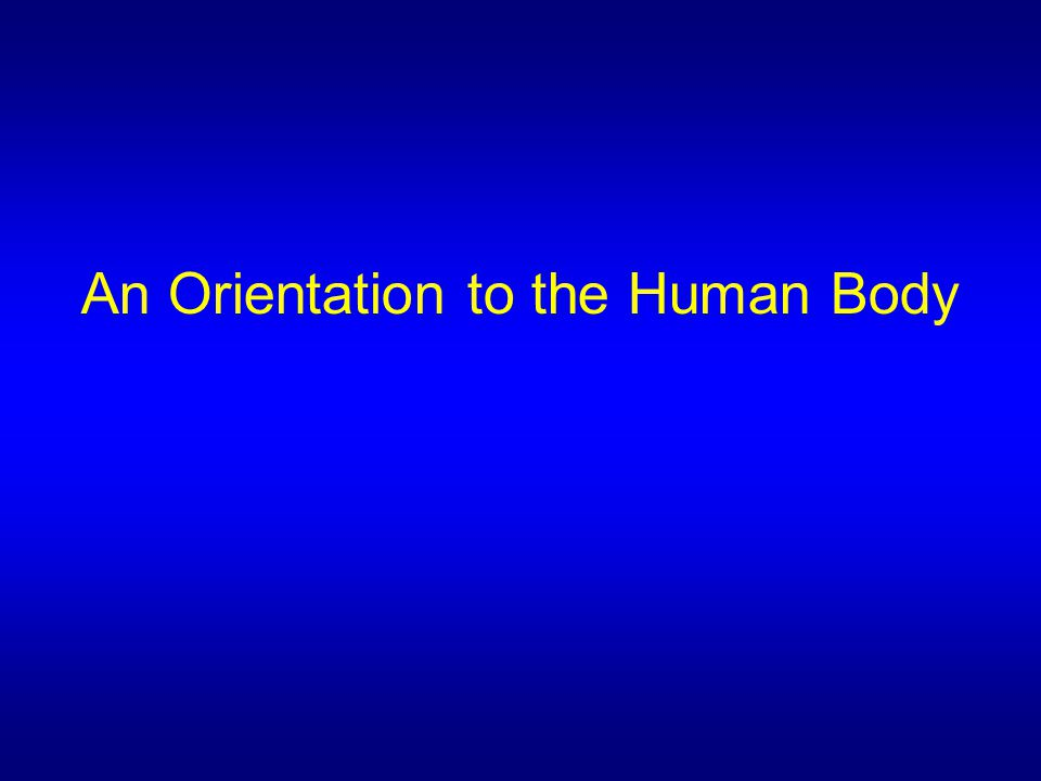 An Orientation to the Human Body