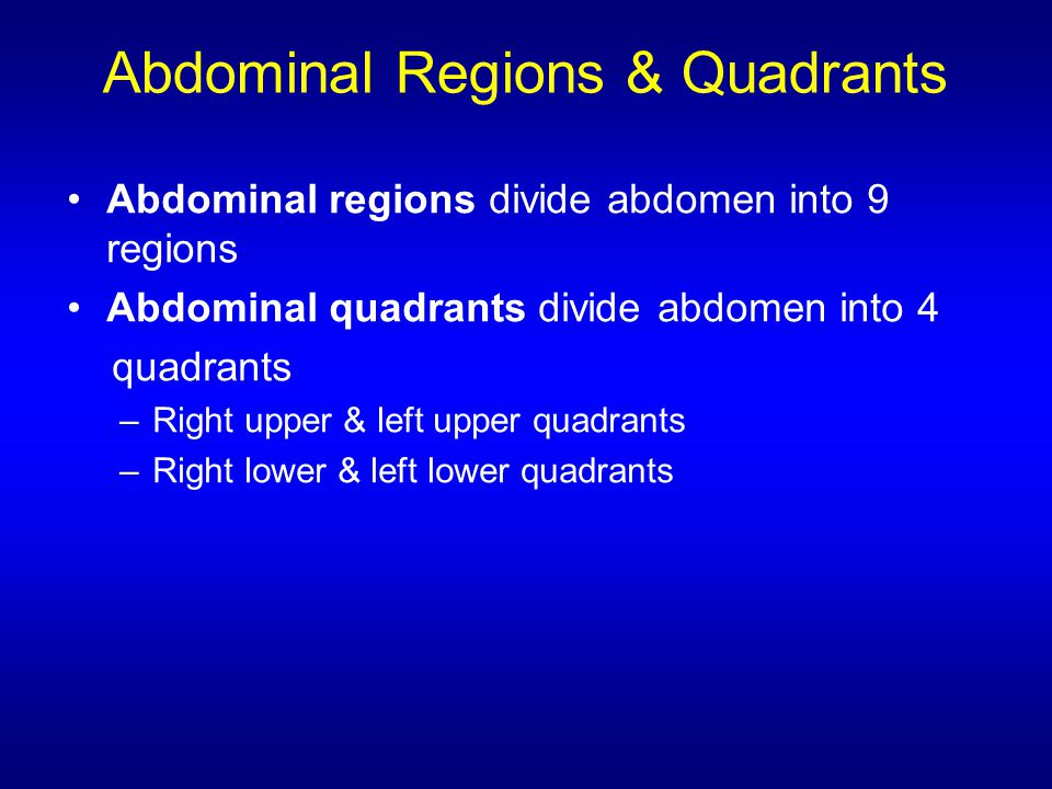 Abdominal Regions & Quadrants