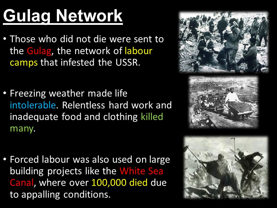 Gulag Network Those who did not die were sent to the Gulag, the network of labour camps that infested the USSR.