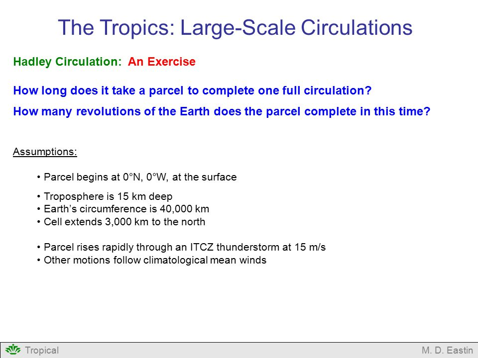 The Tropics: Large-Scale Circulations
