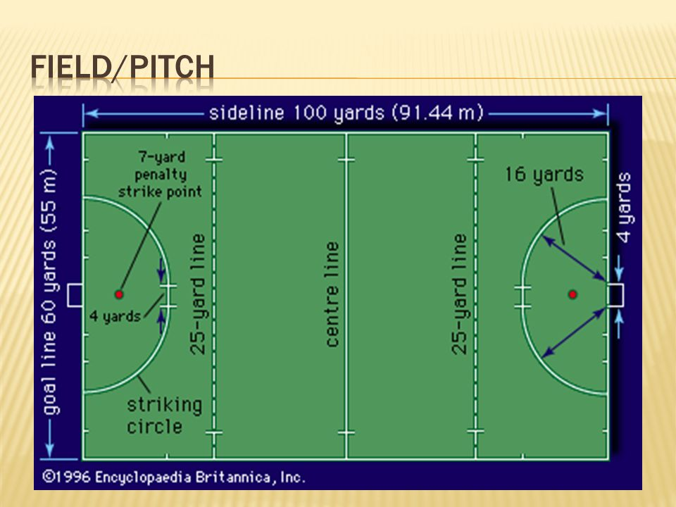 Field/Pitch