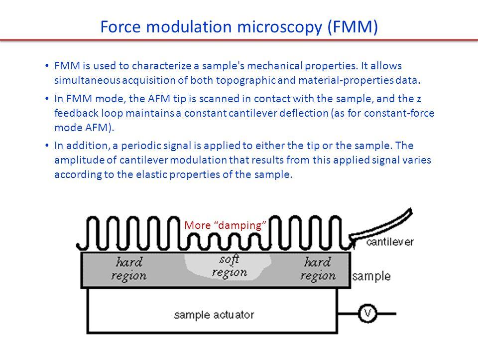 Force modulation microscopy (FMM)