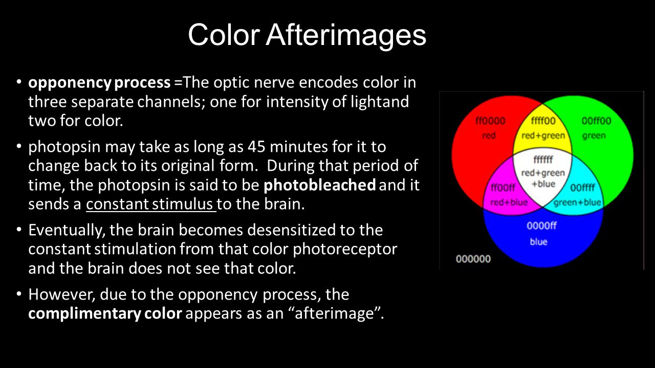 Color Afterimages opponency process =The optic nerve encodes color in three separate channels; one for intensity of lightand two for color.