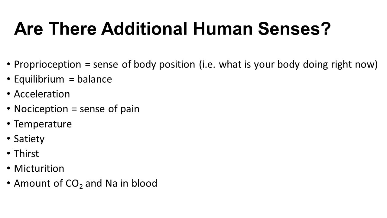 Are There Additional Human Senses