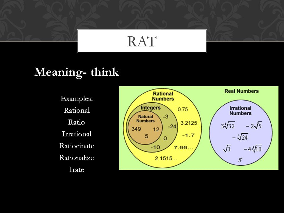 rat Meaning- think Examples: Rational Ratio Irrational Ratiocinate