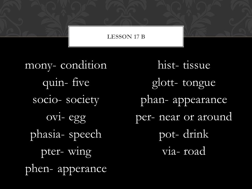 Lesson 17 B mony- condition quin- five socio- society ovi- egg phasia- speech pter- wing phen- apperance