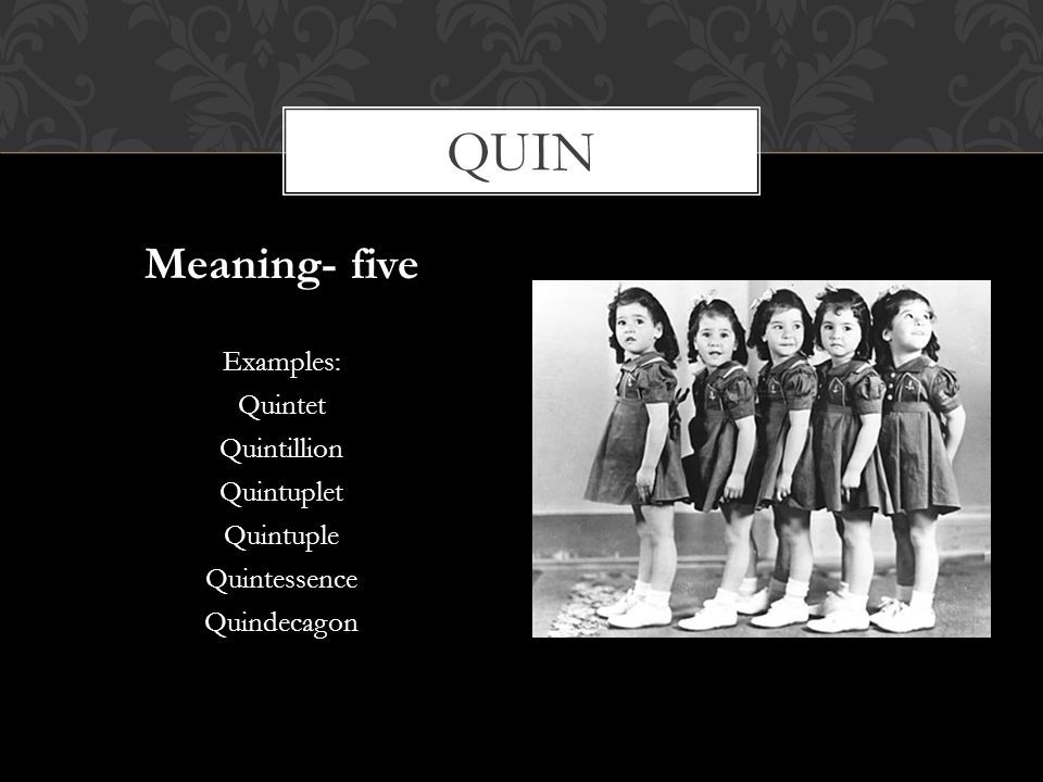 quin Meaning- five Examples: Quintet Quintillion Quintuplet Quintuple
