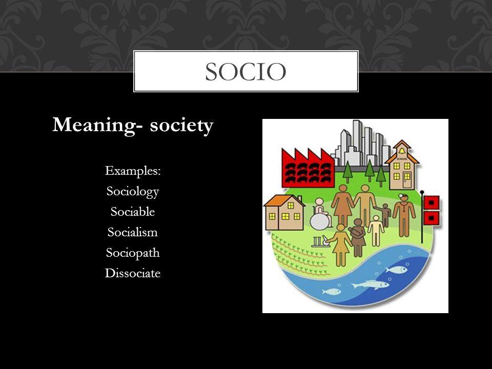 socio Meaning- society Examples: Sociology Sociable Socialism