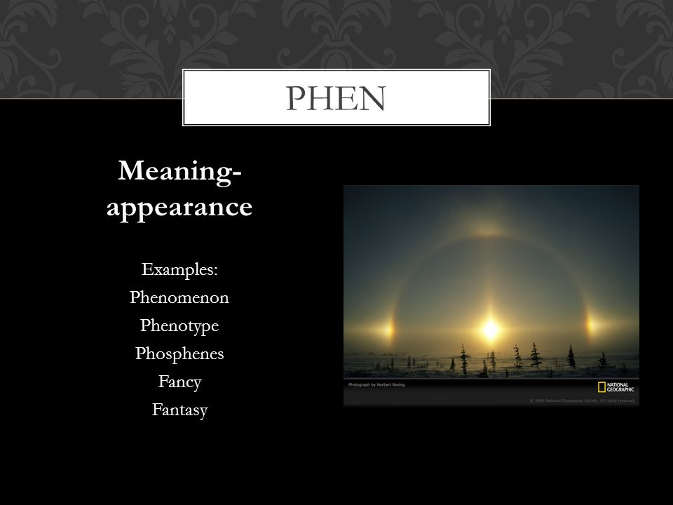 phen Meaning- appearance Examples: Phenomenon Phenotype Phosphenes