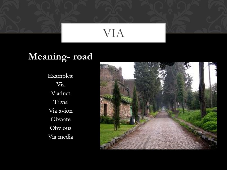 via Meaning- road Examples: Via Viaduct Trivia Via avion Obviate
