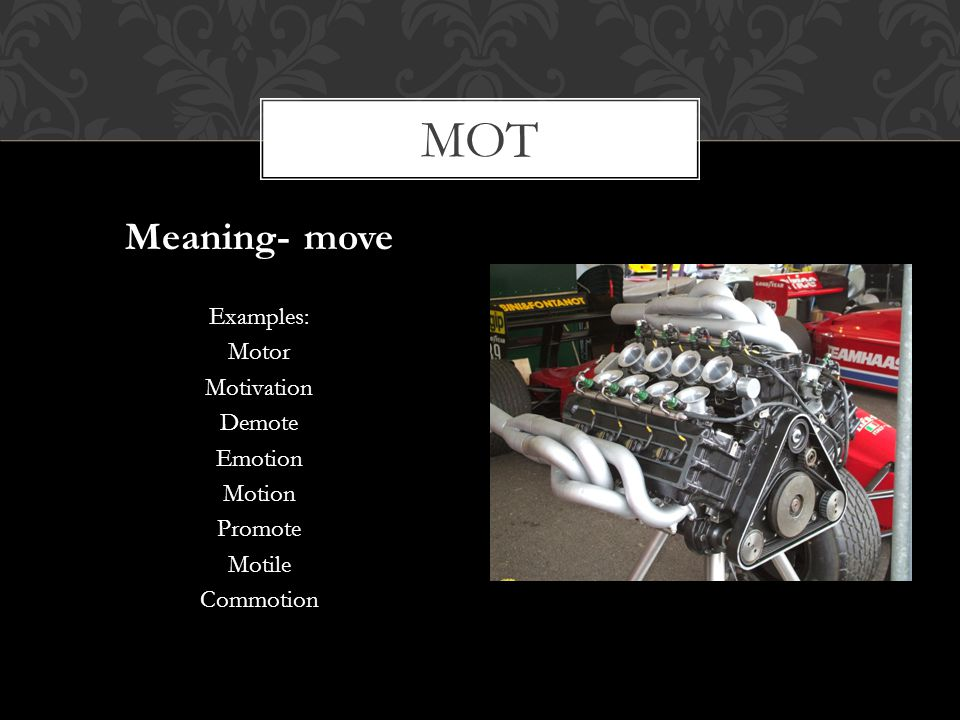 mot Meaning- move Examples: Motor Motivation Demote Emotion Motion