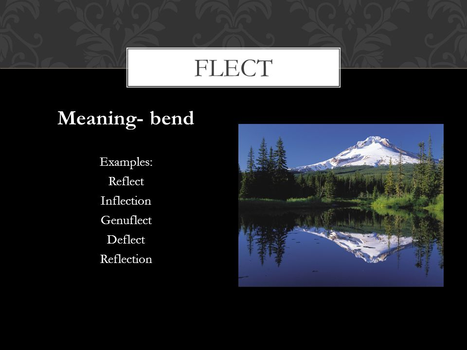 flect Meaning- bend Examples: Reflect Inflection Genuflect Deflect