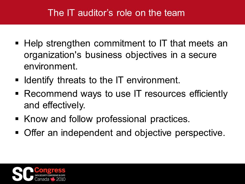 The IT auditor's role on the team