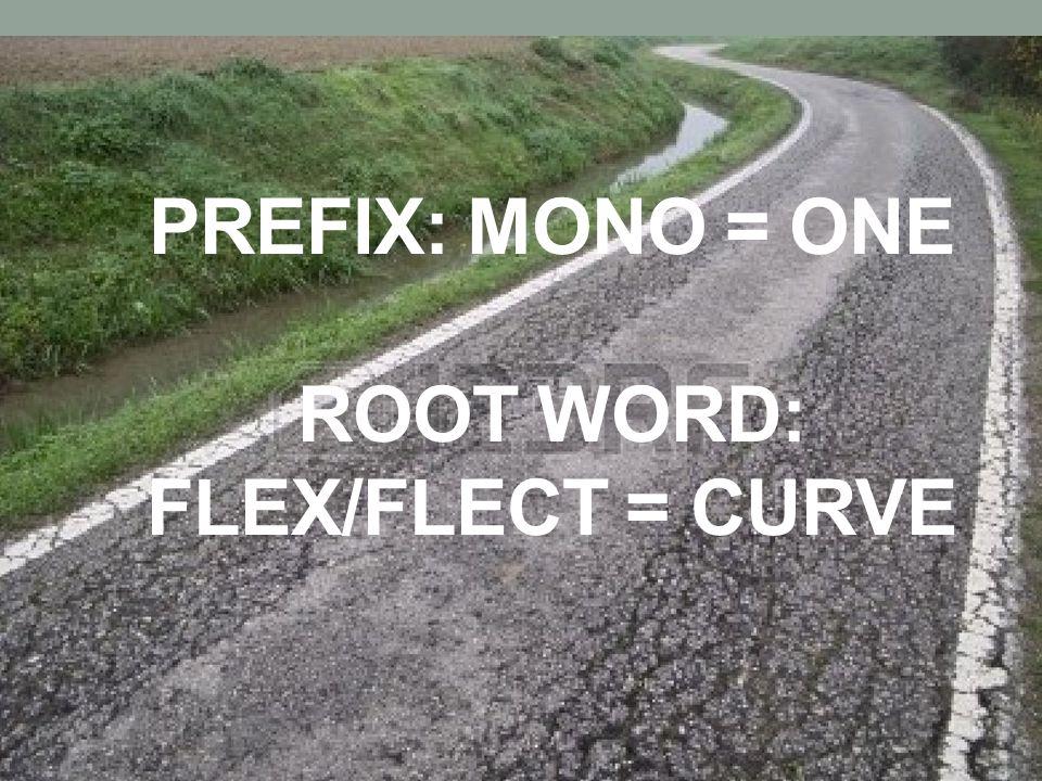 Prefix: Mono = one root word: flex/flect = curve