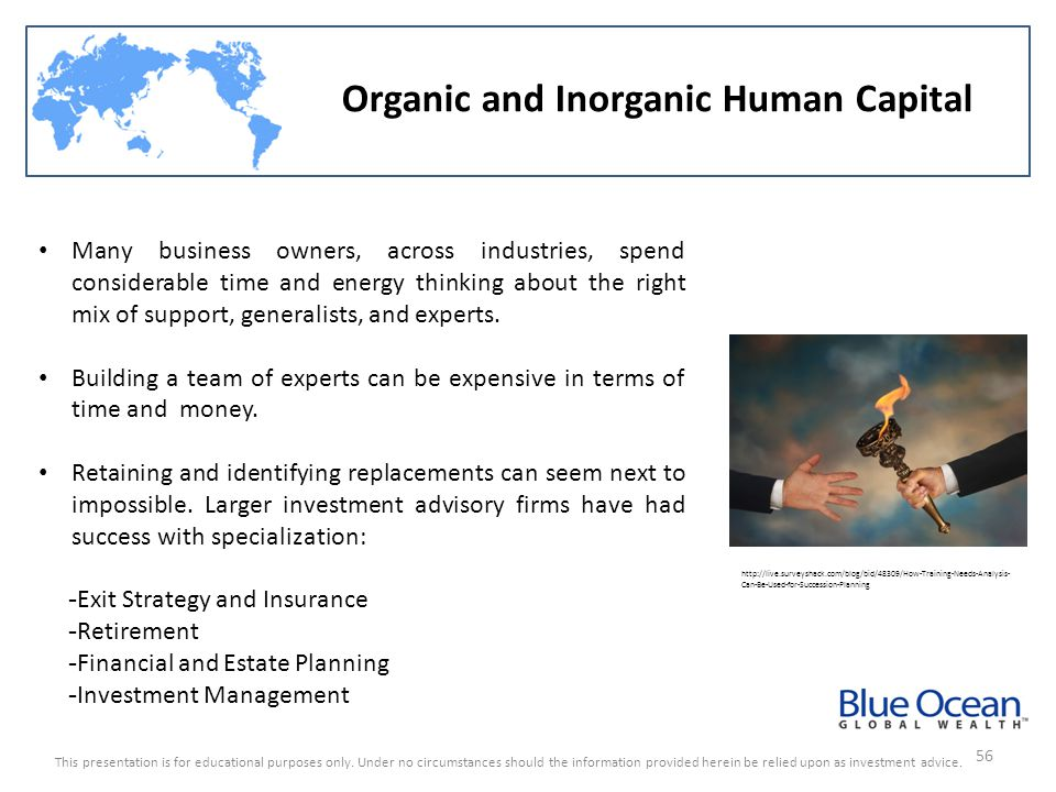 Organic and Inorganic Human Capital