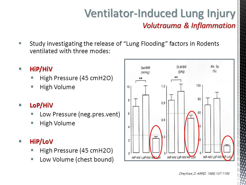 Ventilator-Induced Lung Injury Volutrauma & Inflammation
