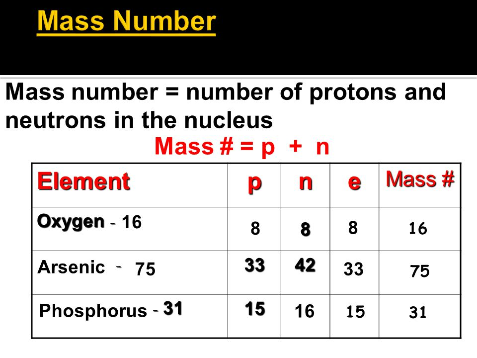 Mass Number Mass number = number of protons and neutrons in the nucleus. Mass # = p + n. Element.