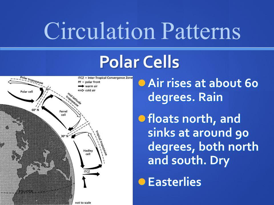 Circulation Patterns Polar Cells Air rises at about 60 degrees. Rain