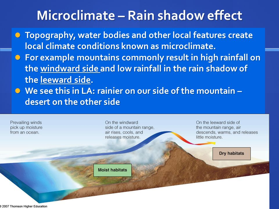 Microclimate – Rain shadow effect