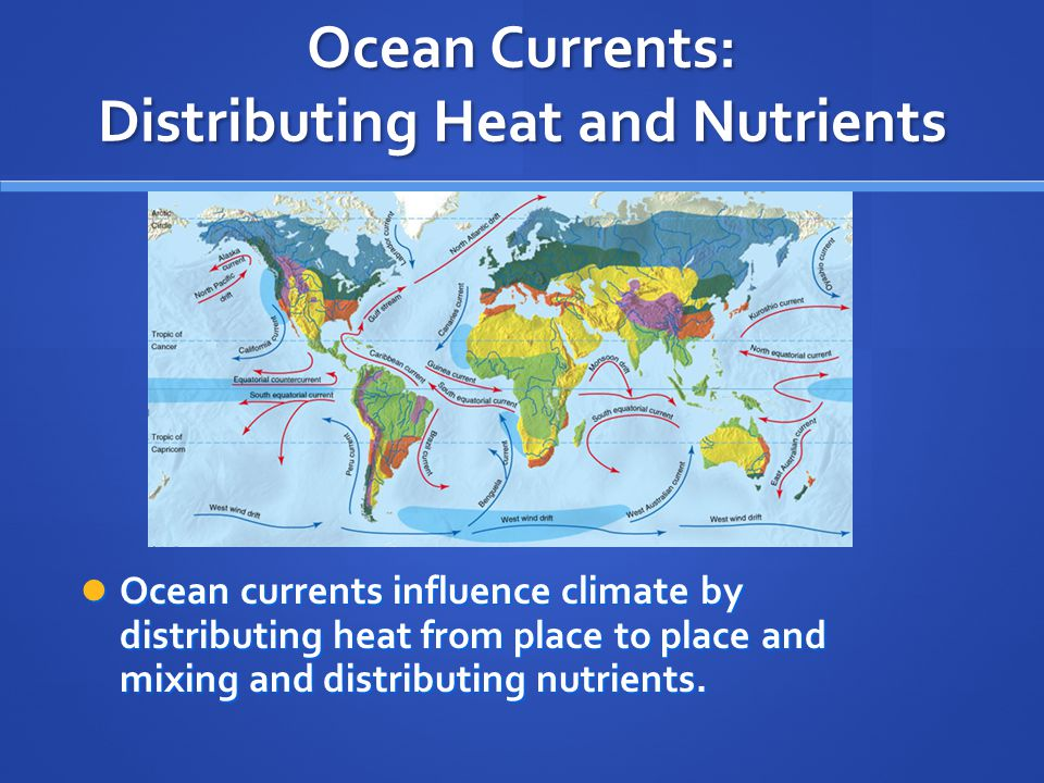 Ocean Currents: Distributing Heat and Nutrients