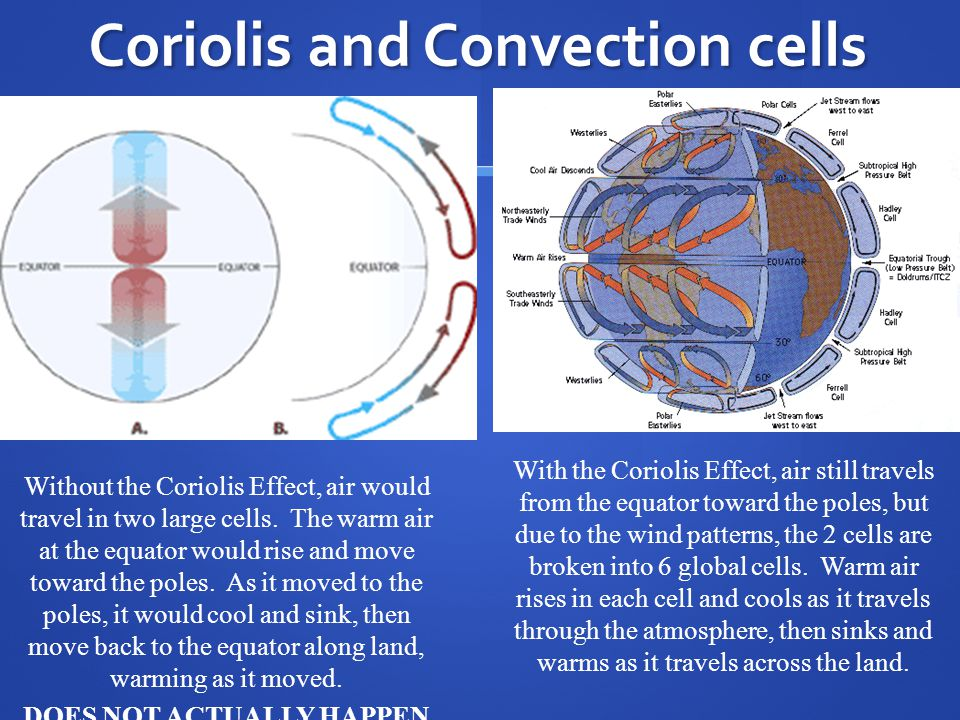 Coriolis and Convection cells
