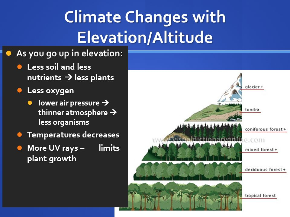 Climate Changes with Elevation/Altitude