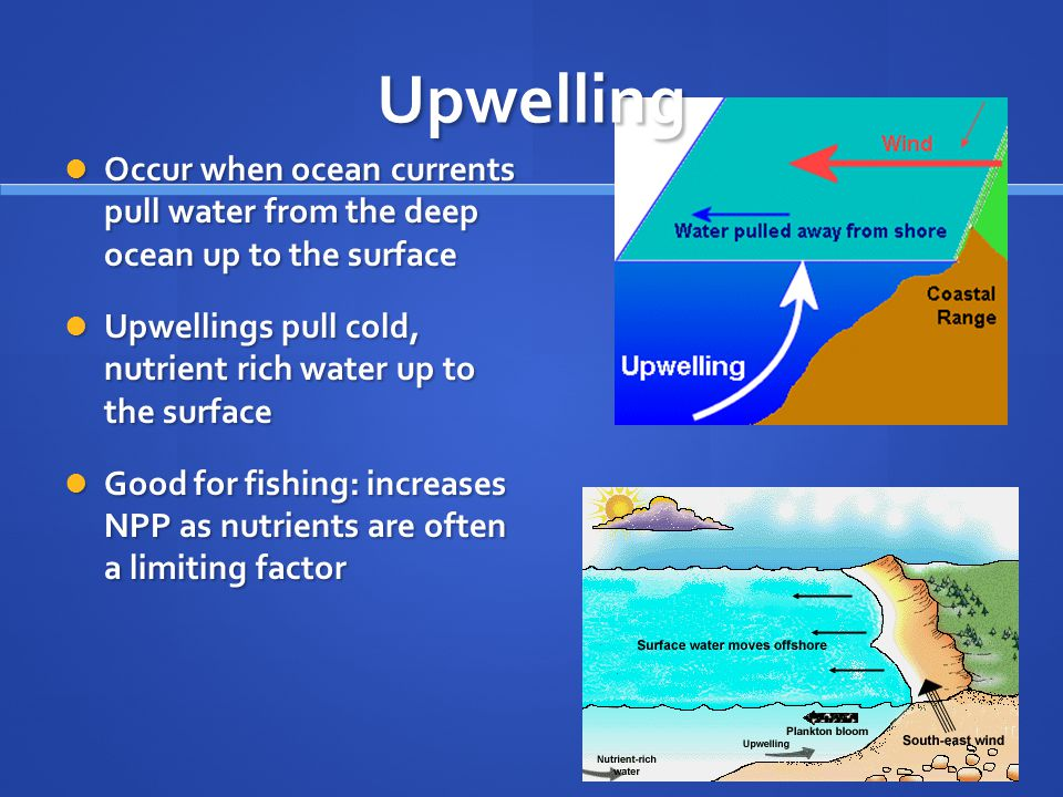 Upwelling Occur when ocean currents pull water from the deep ocean up to the surface.