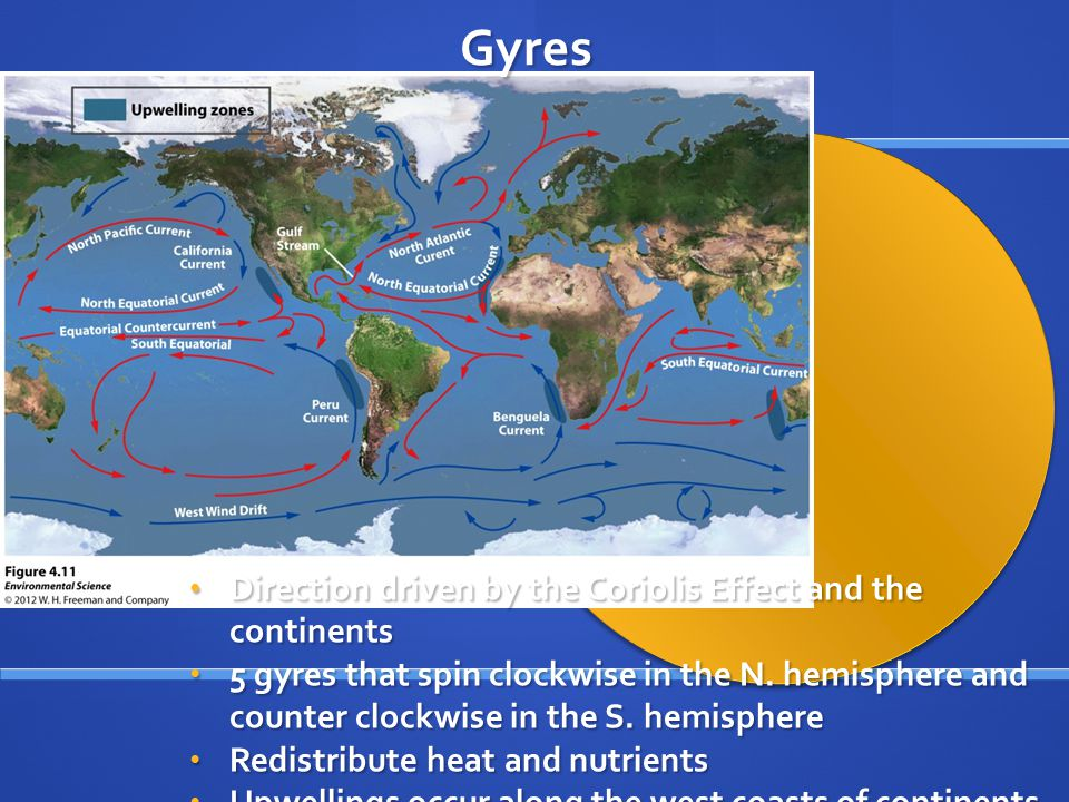 Gyres Direction driven by the Coriolis Effect and the continents
