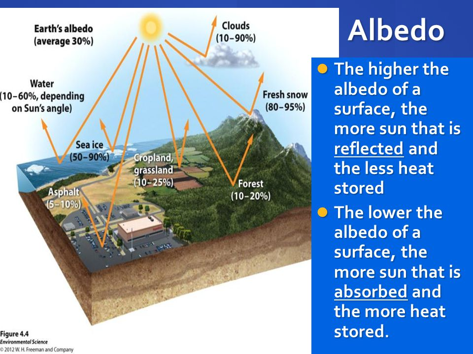 Albedo The higher the albedo of a surface, the more sun that is reflected and the less heat stored.