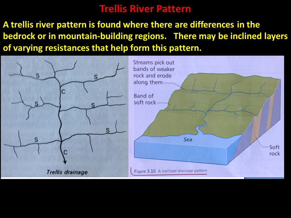 Trellis River Pattern