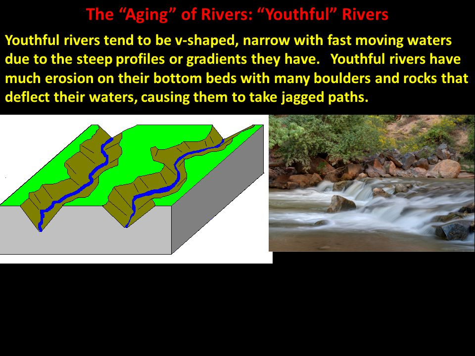 The Aging of Rivers: Youthful Rivers