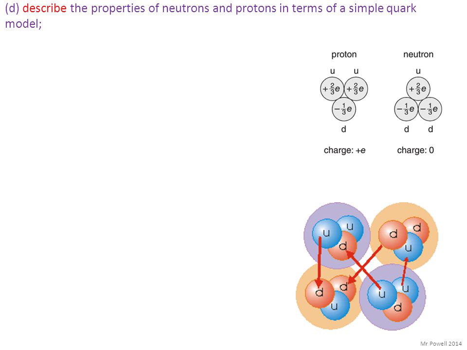 (d) describe the properties of neutrons and protons in terms of a simple quark model;