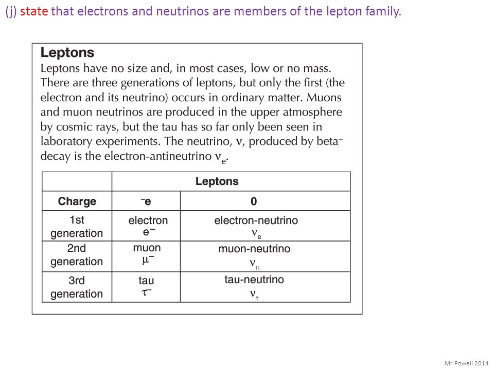 (j) state that electrons and neutrinos are members of the lepton family.