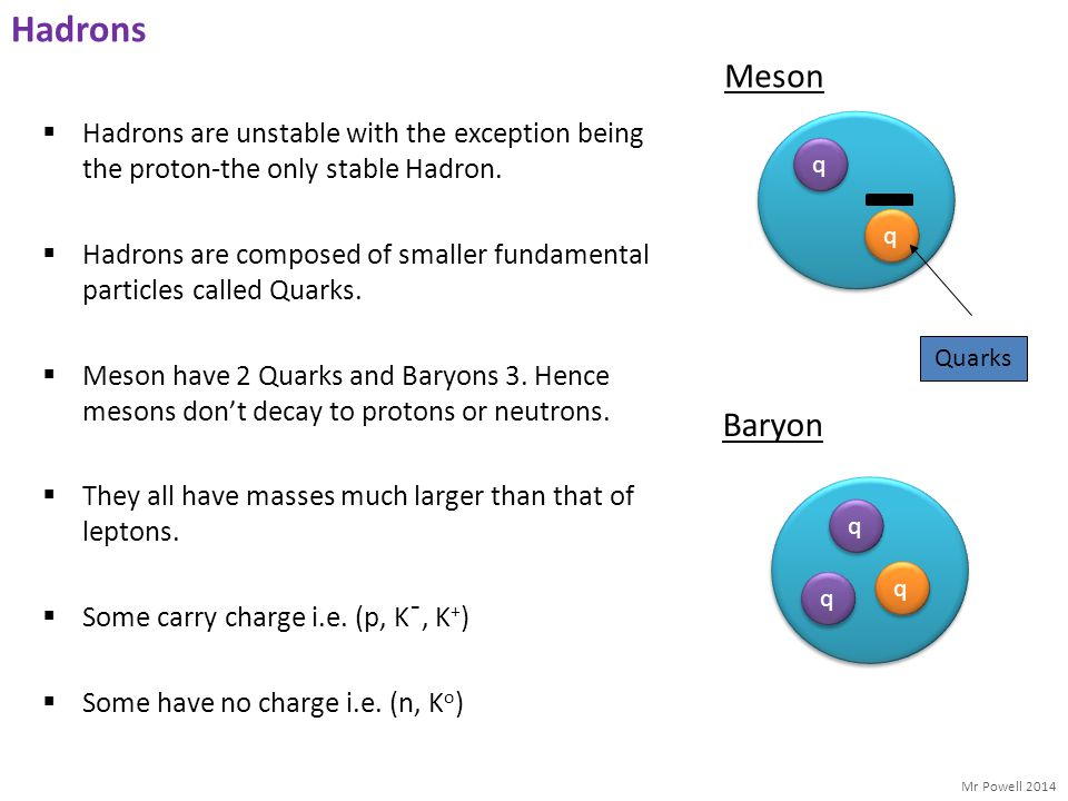 Hadrons Meson. q. Quarks. Hadrons are unstable with the exception being the proton-the only stable Hadron.