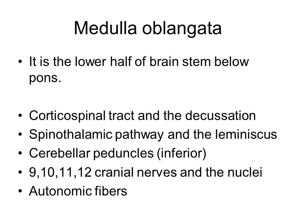 Medulla oblangata It is the lower half of brain stem below pons.