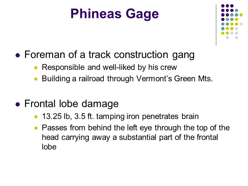 Phineas Gage Foreman of a track construction gang Frontal lobe damage